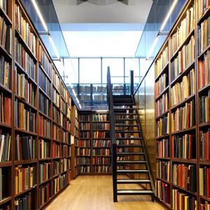 Библиотеки Лысьвы